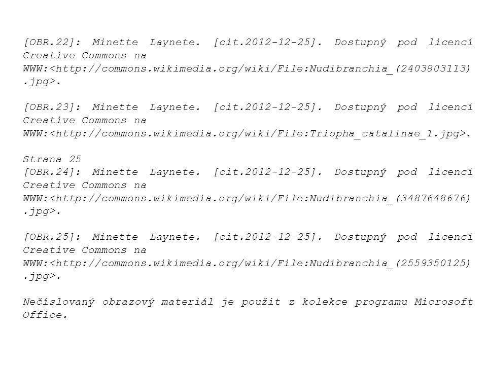 [OBR. 22]: Minette Laynete. [cit. 2012-12-25]